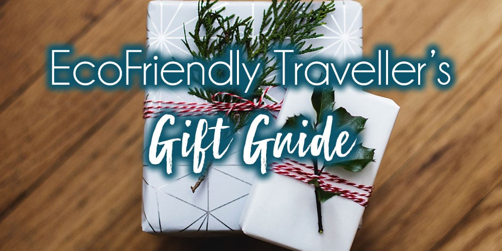 Ultimate Gift Guide for Eco-Friendly Travellers Under $50